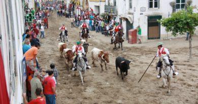 Campinos e touros na Feira de Maio em Azambuja