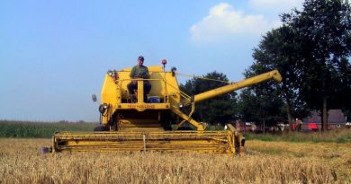 Atividades agrícolas e outras durante o mês de Agosto
