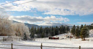 Atividades agrícolas e outras no mês de Dezembro. Inverno. Neve. Natal