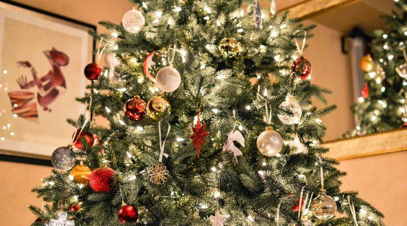 A Lenda da Árvore de Natal - Tradições Transmontanas