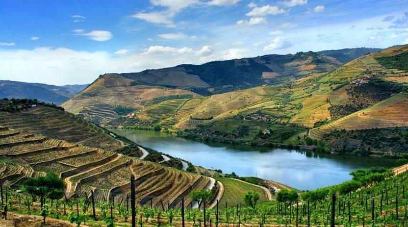Alto Douro Vinhateiro – património mundial em Portugal