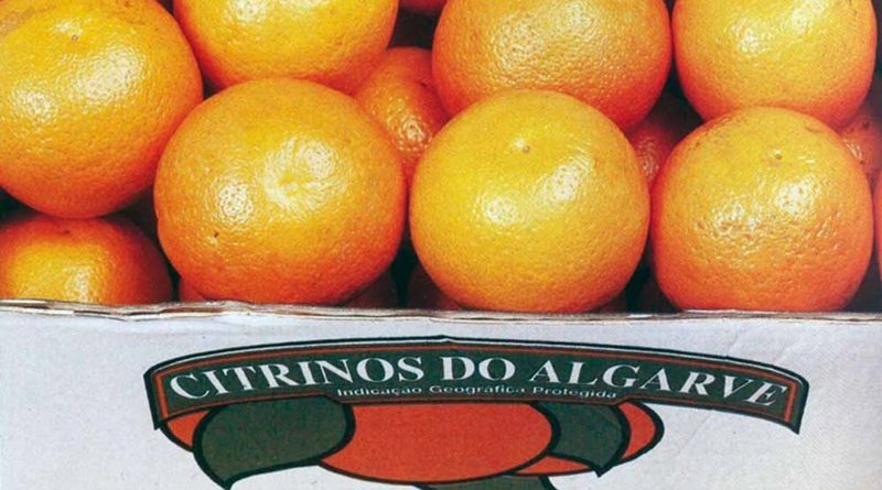 Citrinos do Algarve – frutos saborosos e certificados
