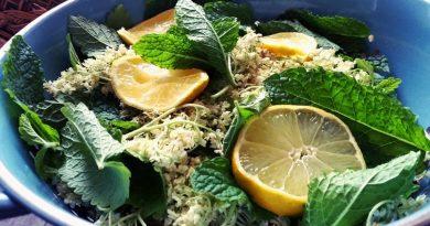 Fitoterapia - os benefícios de algumas ervas aromáticas