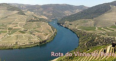 Rota do Vinho do Porto | Turismo em Portugal