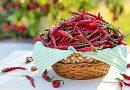 Alguns alimentos que ajudam a diminuir o apetite