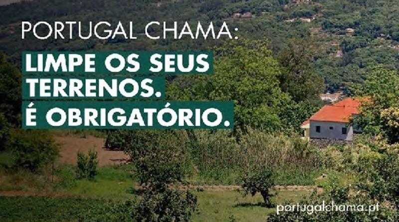 Limpeza das Florestas - Portugal Chama!