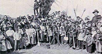 Dia da Árvore | Festa em Viana do Castelo - 1914
