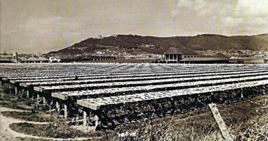 A seca do bacalhau em Viana do Castelo