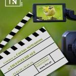 Festival Internacional de Imagem de Natureza 2019