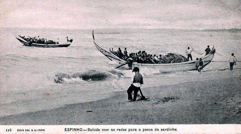 A pesca da sardinha por meio da arte xávega!