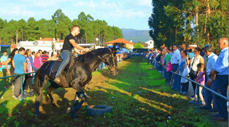 As corridas de cavalos são uma tradição da Feira Romaria dos Santos em Cerdal - Valença.
