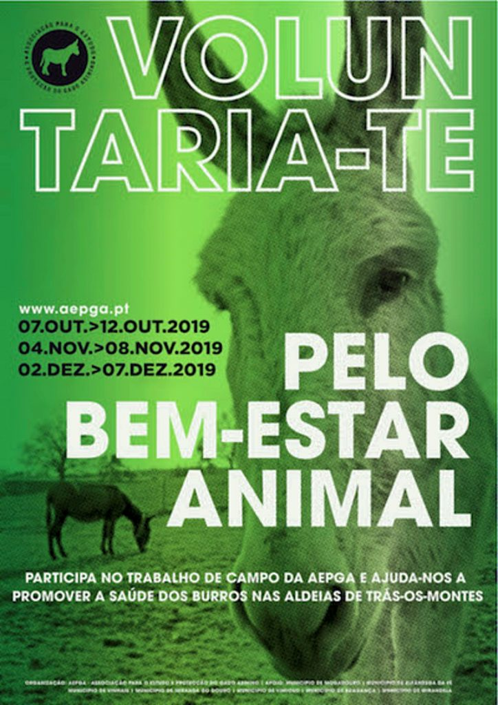Voluntaria-te pelo bem-estar animal | AEPGA