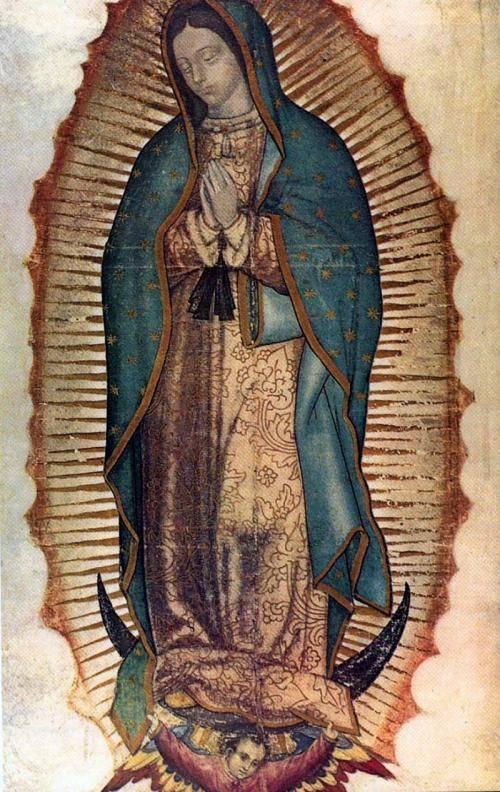 Nossa Senhora de Guadalupe - proteção contra o coronavírus - Covid-19