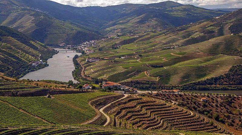 O Alto Douro, visto pelos olhos de Miguel Torga