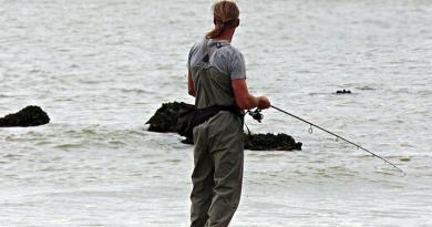 A pesca em Novembro, no mar e nos rios