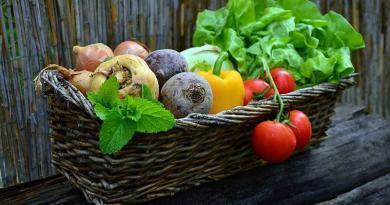 As vitaminas - origem e utilização (síntese)