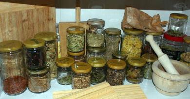 Propriedades aromáticas, condimentares e medicinais das plantas bravias