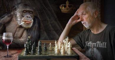 Macacos que foram protagonistas de histórias antigas!