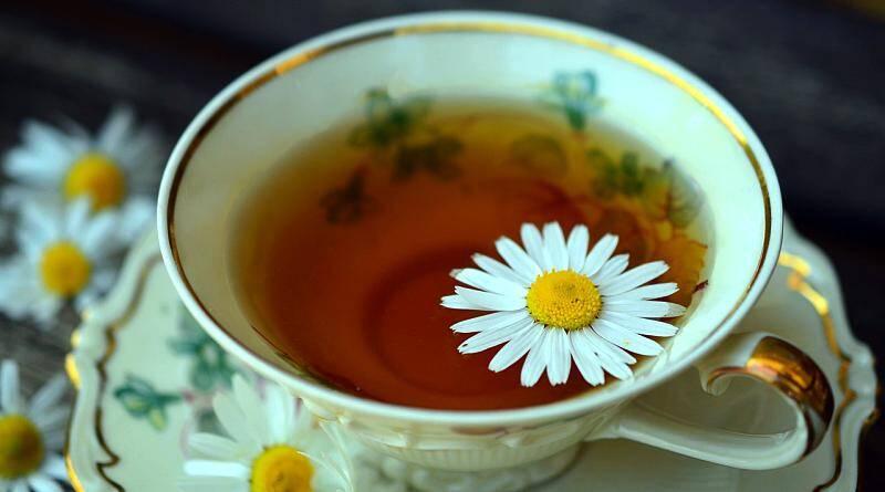 Chá de Camomila, Macela ou Mançanilha | Plantas medicinais